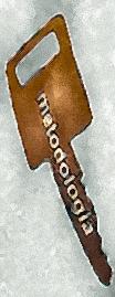 metodologia_online_key