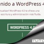 Tutorial en PDF de WordPress